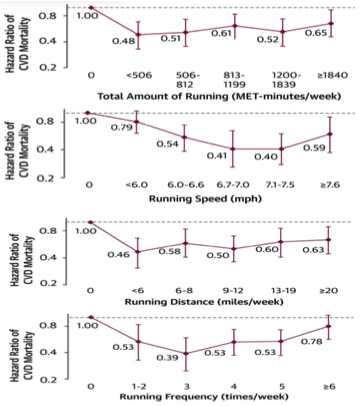 Graphs of optimal running circumstances for maximizing health benefits